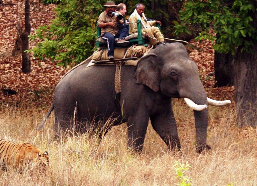 Untitled 10 Razones para Viajar a India este