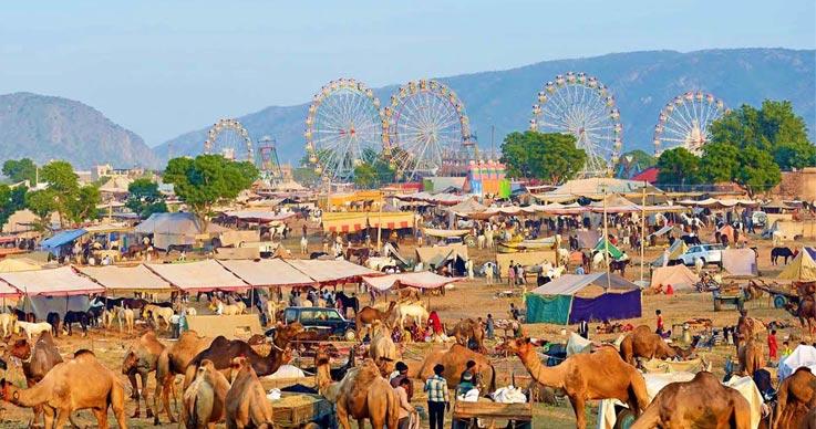 Camel-Festival-of-Pushkar Festivales más Famosos de la India