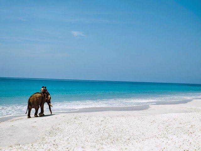 India-en-Marzo-2 Los mejores lugares para viajar a India en Marzo 2020