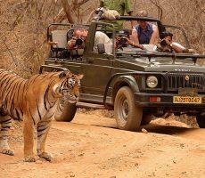 image001-230x200 10 Lugares Más famosos para Visitar en Rajastán