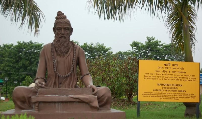Charak-Patanjali-Yogpeeth ¿Qué es el Ayurveda?