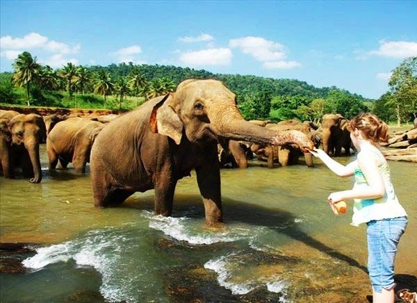 Viaje a India y Sri Lanka